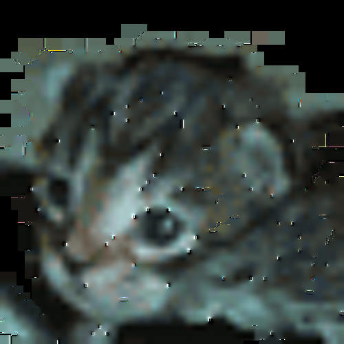 DJBunnfire's avatar