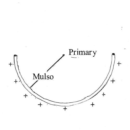 Mulso Primary Records's avatar