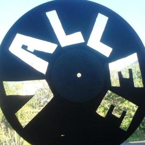 DJ VALLEE's avatar