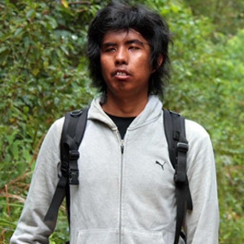 Toyanoyi's avatar