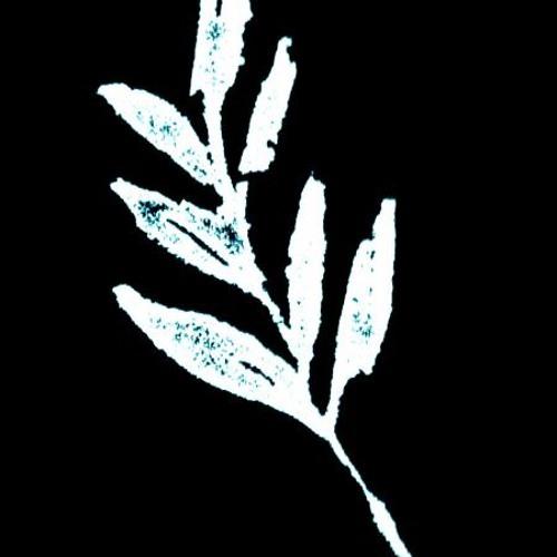 P. Peixoto's avatar