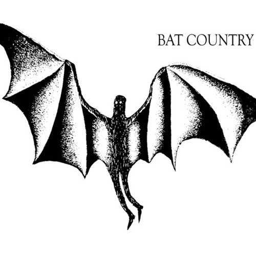 BatCountryAmsterdam's avatar