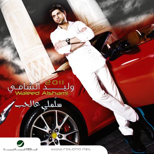 Waleed Alshami's avatar