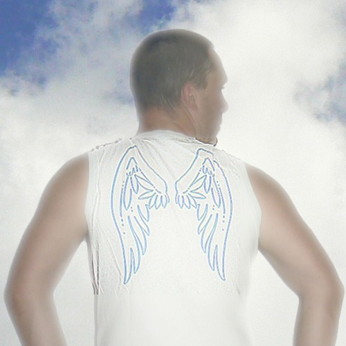 The Angel Flies InTheSky's avatar