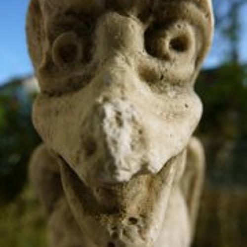 Nicolas Cassin's avatar