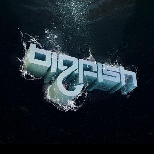 Big Fish Recordings's avatar
