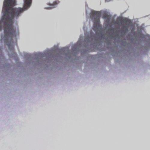 boldermusic's avatar