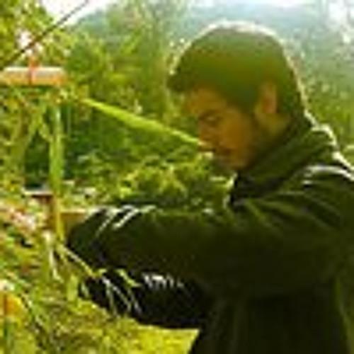 David Casteblanco's avatar