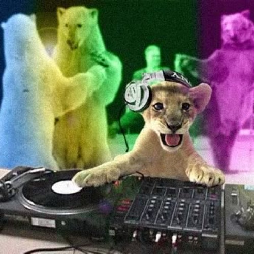 Bass Kitten Mix!