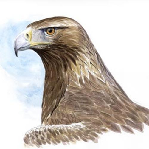 Carlectro's avatar
