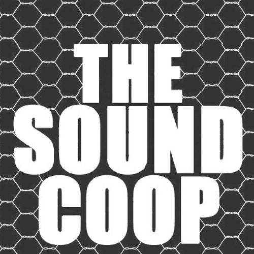 TheSoundCoop's avatar