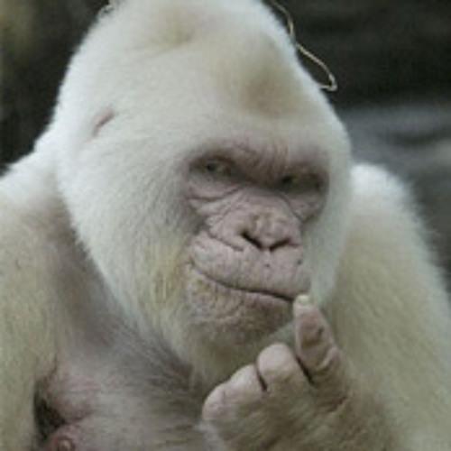 Vanilla Grrrilla's avatar