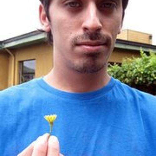 Carlos Letelier Wilke's avatar