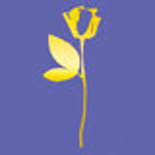 Tyho Festyval's avatar