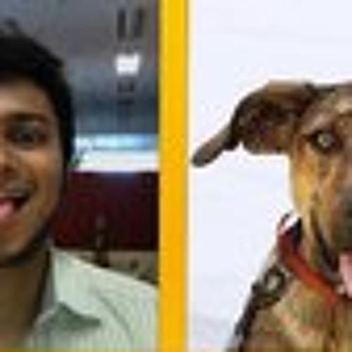 Aditya Mehta's avatar