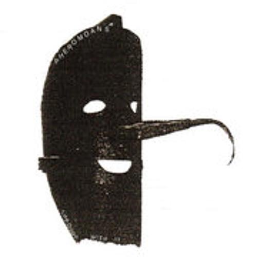 thepheromoans's avatar