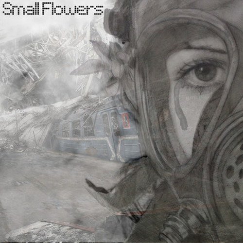 Small Flowers's avatar