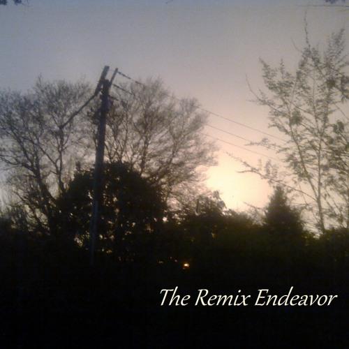 J Gunz ~ Remix Endeavor's avatar