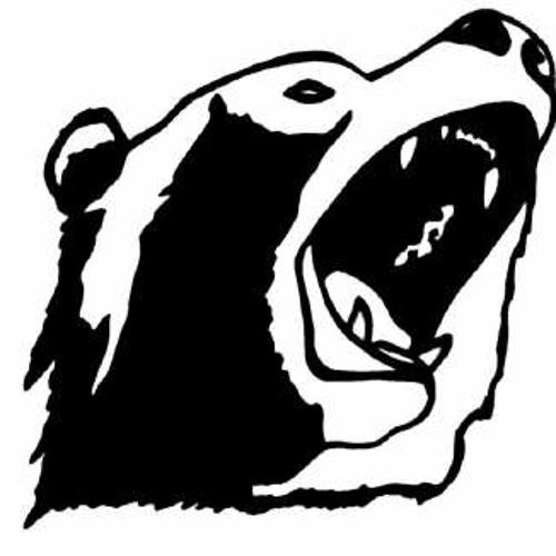 DJSuB's avatar