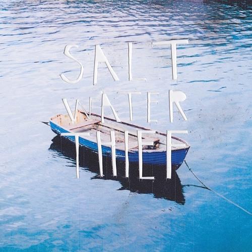 Salt Water Thief's avatar