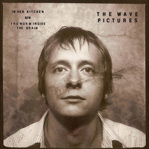 The Wave Pictures's avatar