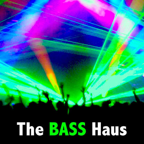 The BASS Haus's avatar