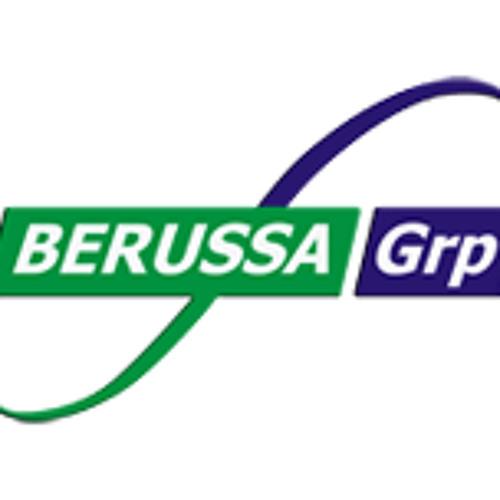 Berussagroup's avatar