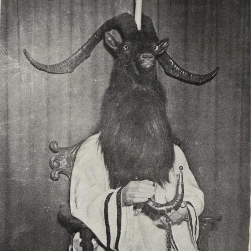 SHAMPOOCHIEF's avatar