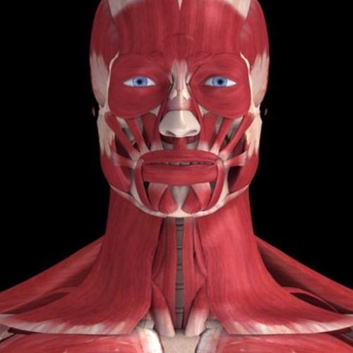 shestnadcatoelicoknigi's avatar
