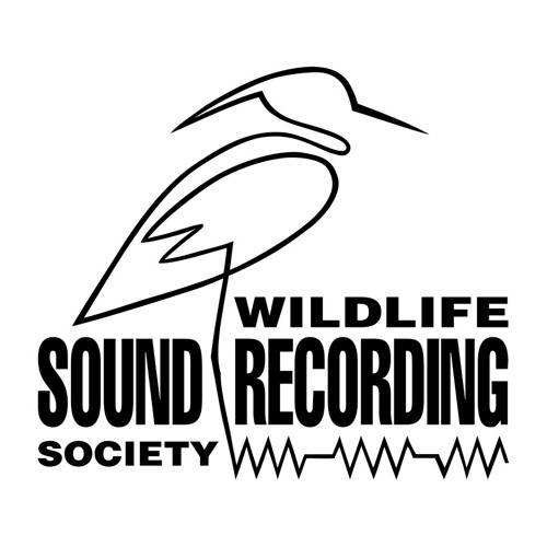 Wildlife Sound Recording's avatar