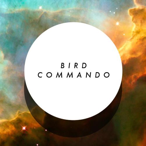 Bird Commando's avatar