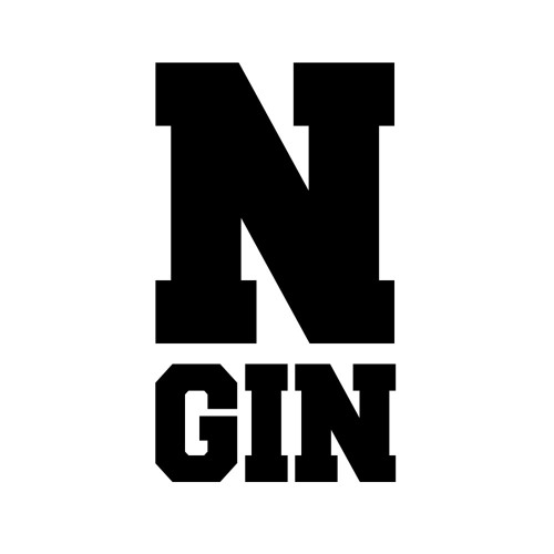 N-Gin's avatar