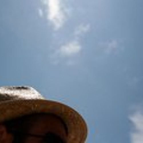 Piero Luciani's avatar