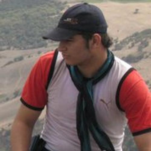 Pouyan Rastgar's avatar