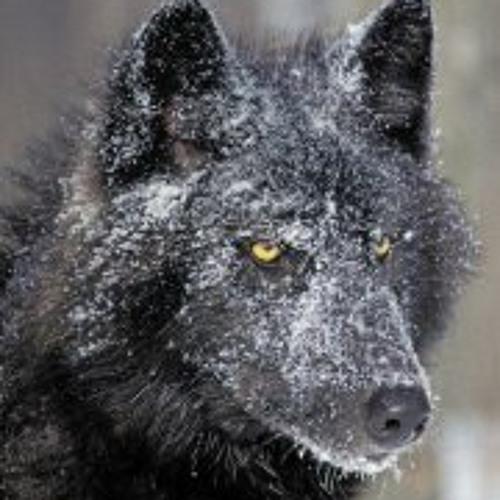 Sukus Trukus's avatar