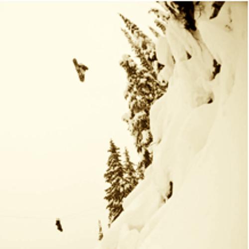 snowboardbro12's avatar