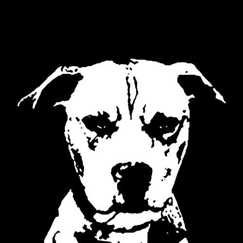 Planey B's avatar