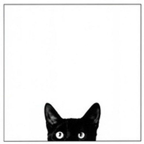 Cat Chen's avatar