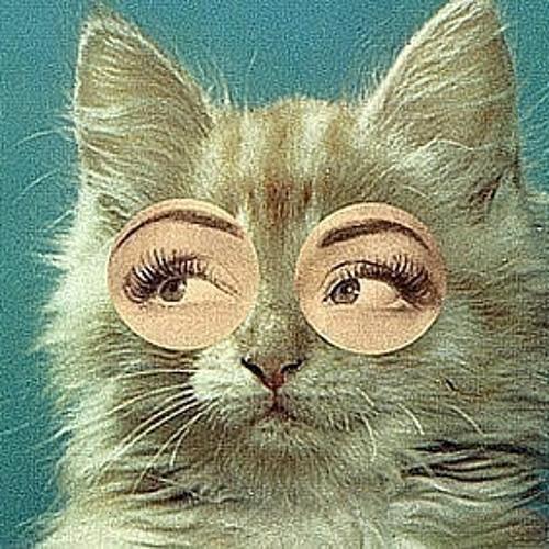 birbabahindi's avatar