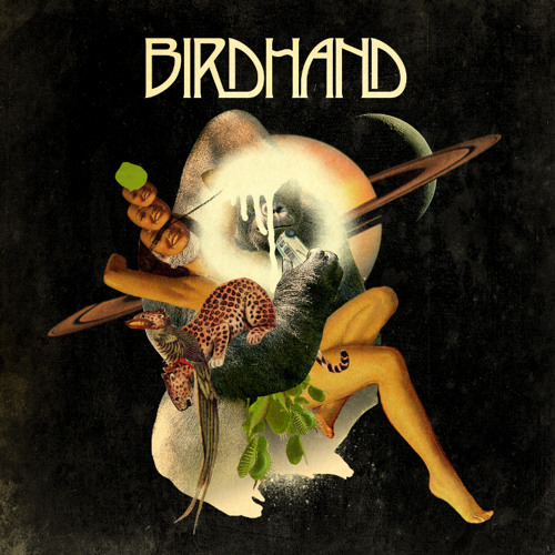 BIRDHAND's avatar