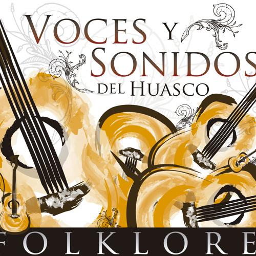 voces&sonidos del Huasco's avatar