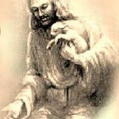 Sameh Nashaat 1