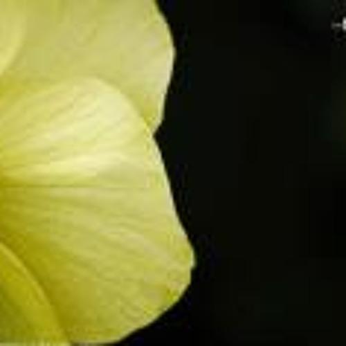 Sandeep KB's avatar
