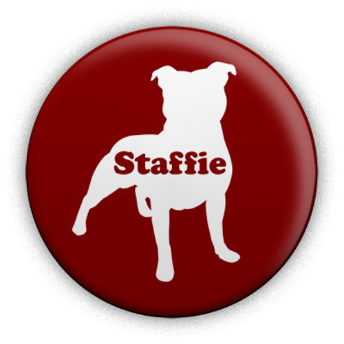 Staffie's avatar