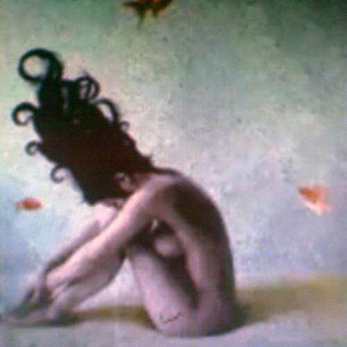 Faerie Aimee's avatar
