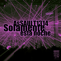 assault1314