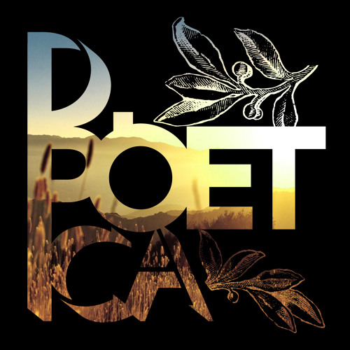 D Poetica's avatar