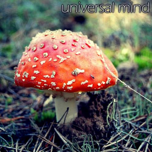 Universal Mind's avatar