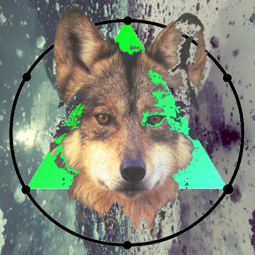 MLVLNT's avatar