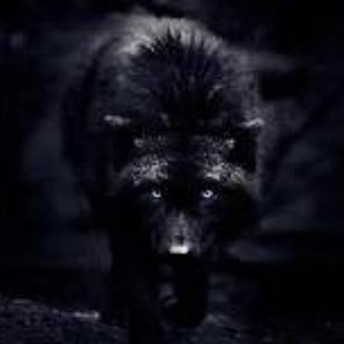 Anon wolf's avatar